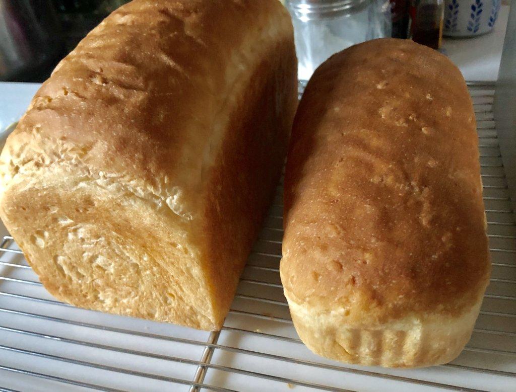 横浜・横須賀のパン&お菓子教室ルミエルの海洋酵母パン